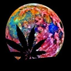 pot leaf silhouette on trippy moon