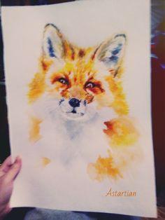 #astartian #fox #animal #animals  #traditionalart #traditionaldrawing #watercolor