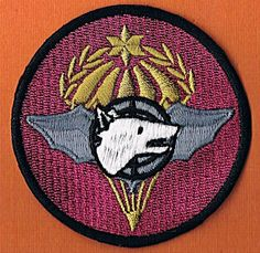 ISRAEL IDF AIRBORNE.CENTRAL TRANSPORTATION & SPECIAL FORCES TRAINING NEW PATCH
