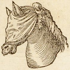 Pictura of Paradin, Claude: Devises heroïques (1557): Premitur, non opprimitur.