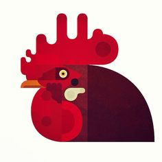 Argijale #illustration #bird #rooster