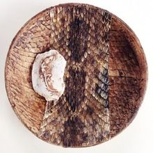 joan martin, maggie's gift, mixed media and snakeskin, diameter . Snake Skin, It Works, Mixed Media, Gift, Nailed It, Gifts, Mixed Media Art
