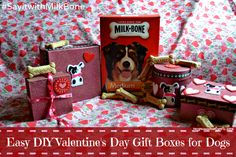 http://www.mypawsitivelypets.com/2014/02/easy-diy-valentines-day-gift-boxes-for.html #MilkBoneLove