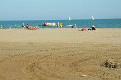 La catégorie Badauds est celle qui traverse avec le plus de succès la longue vie de ce blog. Elle vous présente des tronches de vie que j'ai eu le plaisir d'immortaliser au travers du prisme de mon regard de photographe. Tronche de vie sur la plage -...