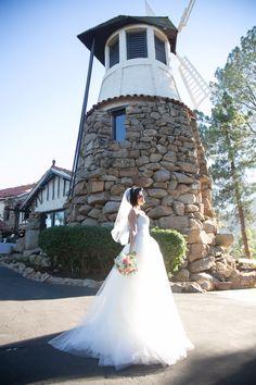 27 Best Trash the dress images in 2015   Wedding, Wedding