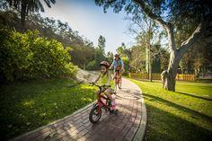 Circuito de bicicletas Bicycle, Circuit, Hotels, Bicycles, Gardens, Bike, Bicycle Kick