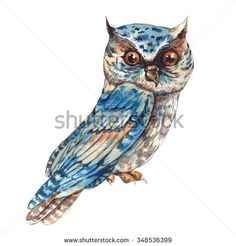 Watercolor owl isolated on white background, Natural Hand Painted Illustration