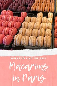 On the hunt for the best Macarons in Paris! Trying out all of the popular places to get Macarons. Find out which one wins!