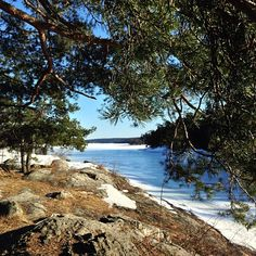 Instagram - Våren vid Tyresö Slott