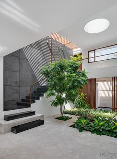 Story Of Three Courts | Collage Architecture Studio - The Architects Diary Interior Architecture, Interior And Exterior, Interior Design, Split Level, Entrance Design, Indian Homes, Dream Pools, Stair Railing, Railings