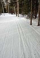 Discover 10 of the best Nordic Centers in Vermont where you can cross-country ski or snowshoe on groomed and natural trails. Rentals, lessons and tours are available for cross-country skiing and snowshoeing beginners and experts. Cross Country Running, Cross Country Skiing, Vermont Skiing, Skiing Colorado, Tahoe Ski Resorts, Xc Ski, Nordic Skiing, Winter Fun, Winter Snow