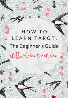 How To Learn Tarot: The Beginner's Guide   Still We Dream Tarot
