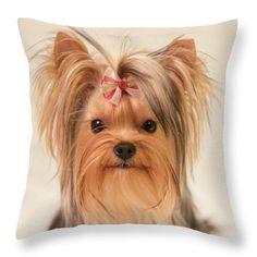 Wonderful Terrier Bow Adorable Dog - 4caffe0f3d317f6bd205e67838851867--dog-home-decor-yorkie-puppy  Graphic_496248  .jpg