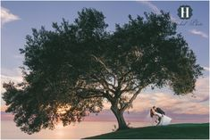 Los Verdes Golf Course Wedding - Hitched Photo 097.JPG