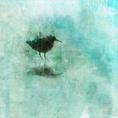Virgin Flight 02: Giclee Fine Art Print 13X19 by krokoart on Etsy