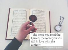 The Quran  is the only book  where the author  loves the reader  more than his or her  own mother.