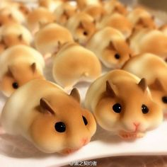 hamster bread… the latest bread craze in japan be honest, would you eat these cute little hamsters? no, they're not real hamsters, but they sure do a good job of making them look a little too realistic! Very talented Japanese bakers make this adorable Cute Food, Good Food, Yummy Food, Cute Baking, Food Art For Kids, Cute Desserts, Snacks Für Party, Food Decoration, Food Humor