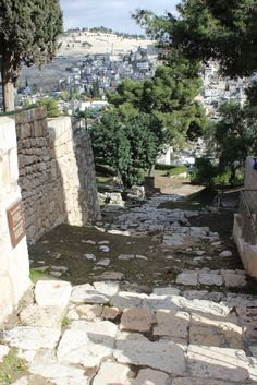 Path to Gethsemane