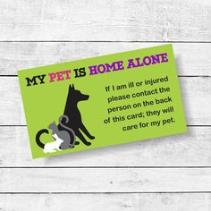 1000 images about pet home alone on pinterest home