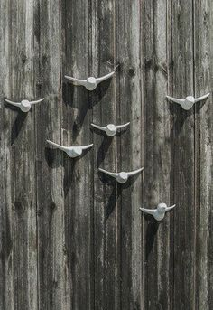 Montage, Insects, Animals, Dark Backgrounds, Ceramic Birds, Light And Shadow, House Exteriors, Room Wall Decor, Wall Design