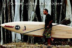 Paddle Surf Hawaii