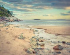 Fine art landscape photography print of a stream meandering into the ocean on Sand Beach in Acadia National Park, Maine by Allison Trentelman.