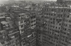 Kowloon Walled City, Ryūji Miyamoto