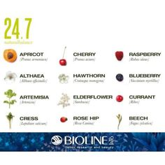 24.7 NaturalBalance stabilizes deficiencies and provides skin with valuable vitamins, minerals and oxygen. How? With a cocktail of active ingredients extracted from plants, gems and flowers... For healthy beauty! #naturalbalance #antiaging #vitamins #minerals #oxygen #beauty #skincare #bioline #natural
