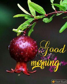 Good Morning Flowers, Good Morning Good Night, Good Morning Images, Good Morning Quotes, Happy Friendship Day, Happy Morning, Morning Greeting, Erotic Art, Mornings