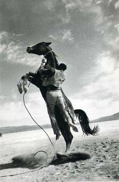 """This looks like a still from Clark Gable's last movie """"The Misfits"""". Co-starring Marilyn Monroe, her final completed film, Marilyn's character is appalled by the cruel method of breaking the wild horse."""