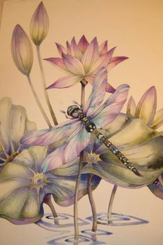 Dragonflies…How to Paint Them and What They Signify! A New Art Class By Jody Bergsma Dragonfly Art, Dragonfly Tattoo, Dragonfly Painting, China Painting, Fabric Painting, Photo D Art, Art Et Illustration, Dragonfly Illustration, Watercolour Tutorials