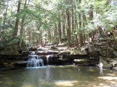Swallow Falls State Park, Maryland...favorite place to go when i was little