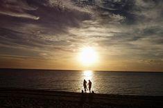 Last light at my local beach with Kate, Damien and their two lovely doggies. A little preview is up in the blog tonight 👉link in profile #love#weddingphotographyinspiration #wedding #junebugweddings #lastlight #melbourneweddings #dogsofinsta #melbournephotographer #chasinglight #realwedding #authenticonly #furbabies #melbourneweddingphotographer#makeportraits #lovebirds #fineartwedding #dirtybootsandmessyhair #modernwedding #loveauthentic #beach #bridetobe #engagementphotos #dogsofinsta...