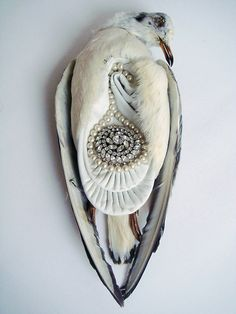 Jane Howarth - The Ladies (2012) - A collection of 1930s taxidermy sea birds and junk jewelry