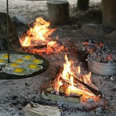 Morgenmad når der er bedst!  Nybagt grahamsboller i dutchovn  æg  bacon  pølser  bønner og nu kværnet kaffe. 'Breakfast for champions' #morgenmad #bålmad #bål #eventyr #outdoor #outside # dutchoven