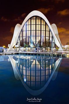 Curvas, Valencia, Spain. Ciudad de las artes y las ciencias #architecture ☮k☮