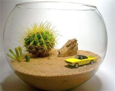 different scenes for cars in different glass bowls