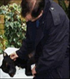 QUI L'ASSURDA STORIA DI OTIS.   PER FAVORE, CONDIVIDETELA PERCHE' QUESTA VITTIMA INNOCENTE NON VENGA DIMENTICATA.  http://all-4animals.com/2012/08/01/le-vittime-della-breed-specific-legislation-otis/