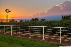 Mike Hollingshead Nature Photography........sunset over a cornfield in eastern Nebraska
