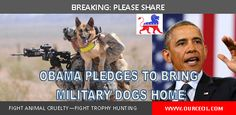 Obama Pledges To Bring Military Dogs Back To US Soil Upon Retirement