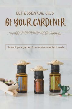 Gardening is such a fun and rewarding hobby. Let these essential oils make your gardening simple.