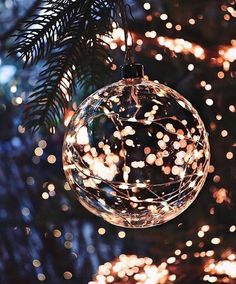 Decorating with fairy lights - Page 7 of 28 Christmas Decorating with fairy lights - Page 7 of 28 - newyearfairys. comChristmas Decorating with fairy lights - Page 7 of 28 - newyearfairys. Christmas Mood, Noel Christmas, Christmas Bulbs, Christmas Wreaths, Christmas Christmas, Lights Of Christmas, Christmas Ideas, Xmas Lights, Holiday Mood