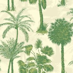 Buy Campari, 950606 Sophie Conran Coconut Grove Paste the Wall Wallpaper from our Wallpaper range at John Lewis & Partners.