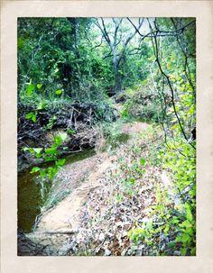 Horseshoe Trail, Grapevine, Texas