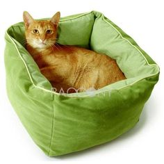 Only $43.99 Worldwide Free Shipping Deluxe Cat Bed with Ultimate Flexible and Reversible Mat on www.paccony.com
