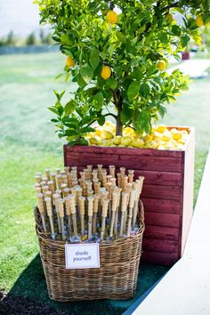 lemon yellow weddings | Inspired by This Lemon Yellow Palm Springs Wedding | Inspired by This ...
