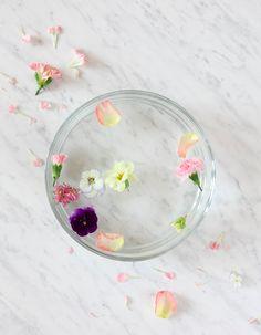 Edible flowers featured in SOFFA magazine issue 02 | Photography: SOFFA magazine | www.soffamag.com | #SoffaMag #Soffa02 #Flowers
