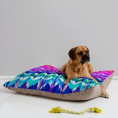 DENY Designs Holly Sharpe Summer Dreaming Pet Bed