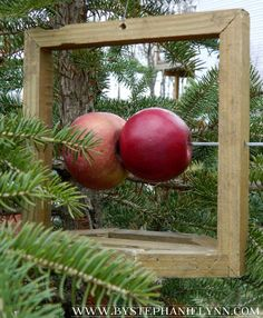 Make A Rustic Fresh Fruit Bird Feeder For Your Feathered Friends
