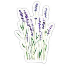 purple lavender  Stickers